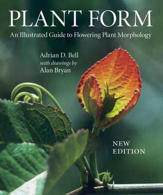 Plant Form by Adrian Bell