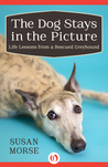 The Dog Stays in the Picture: Life Lessons from a Rescued Greyhound