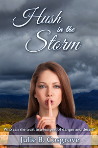 Hush in the Storm by Julie B. Cosgrove