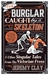 The Burglar Caught by a Skeleton: And Other Singular Tales from the Victorian Press