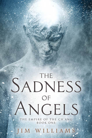 The Sadness of Angels by Jim Williams