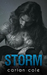 Storm (Ashes & Embers, #1)
