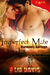 Imperfect Mate (Harmony Springs Series, Bk 1)