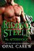 Riding Steele: Aftershock (Riding Steele, #6)