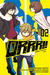 Durarara!! Yellow Scarves Arc, Vol. 2