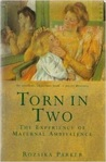 Torn in Two: Experience of Maternal Ambivalence