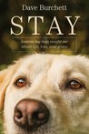 Stay: Lessons My Dogs Taught Me about Life, Loss, and Grace