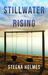 Stillwater Rising by Steena Holmes