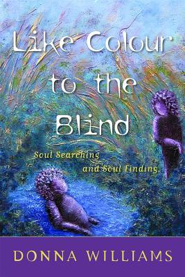 Like Colour to the Blind by Donna Williams