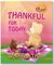 Thankful For Today: Little Bear Series (Volume 1)