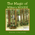 The Magic of Wilkie's Woods by Wayne Lincourt