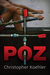 Poz (The Lives of Remy and Michael, #1)