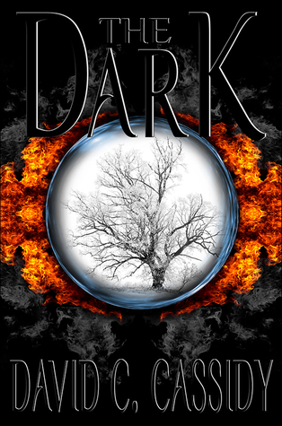 The Dark by David C.   Cassidy