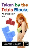 Taken by the Tetris Blocks: An Erotic Short Story (Digital Desires, #1)