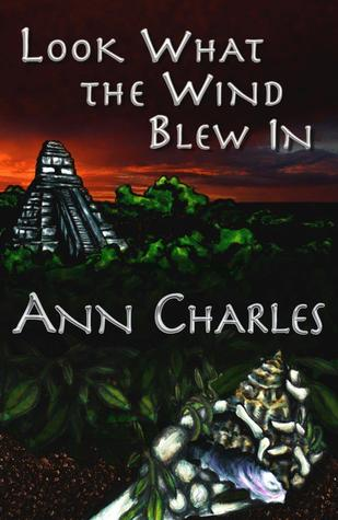 Look What the Wind Blew In (Dig Site Mysteries, Book 1)