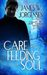 Care and Feeding of the Soul Book Two of the Jamie Griffin Series