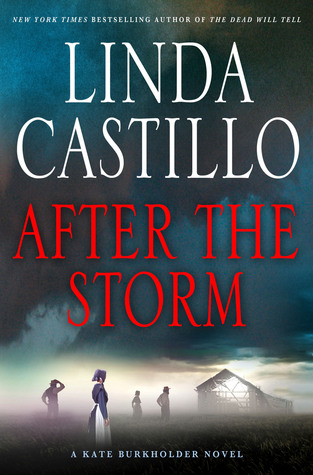 After the Storm - by Linda Castillo
