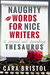 Naughty Words for Nice Writers, A Sexual and Spanking Thesaurus