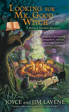 24611676 Looking For Mr Good Witch