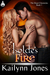 Isolde's Fire (The Draoi Chronicles Book 1)