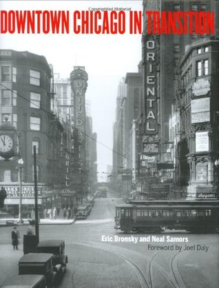 Downtown Chicago in Transition by Eric Bronsky