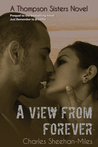 A View from Forever (Thompson Sisters, #3)