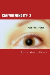 Can You Mend It? Part 2 by Billy Wood-Smith