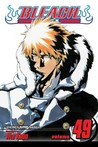 Bleach, Volume 49: The Lost Agent  (Bleach, #49)