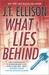 What Lies Behind (Dr. Samantha Owens, #4)