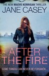 After the Fire (Maeve Kerrigan #6)