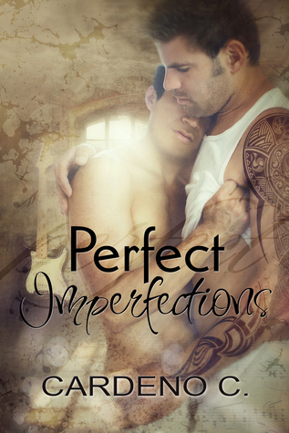 Perfect Imperfections Book Cover