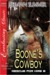 Boone's Cowboy (Rescue for Hire, #8)