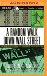 Random Walk Down Wall Street, A: The Time-Tested Strategy for Succesful Investing