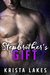 Stepbrother's Gift by Krista Lakes