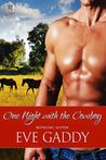 One Night with the Cowboy (Whiskey River, #2)