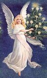 Looking for Angels Saints for Christmas