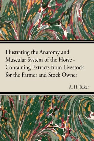 Illustrating the Anatomy and Muscular System of the Horse - Containing Extracts from Livestock for the Farmer and Stock Owner A.H. Baker
