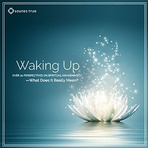 Waking Up: Over 30 Perspectives on Spiritual Awakening - What Does It Really Mean?