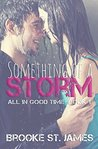 Something of a Storm (All in Good Time, #1)