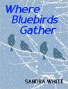 Where Bluebirds Gather