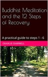 Buddhist Meditation and the 12 Steps of Recovery: A practical guide to steps 1 - 6