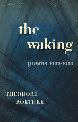 Theodore Roethke dolor meaning