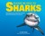 Please Be Nice to Sharks: Fascinating Facts about the Ocean's Most Misunderstood Creatures