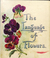 The Language of Flowers by Margaret Pickston