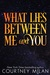 What Lies Between Me and You (Cyclone, #3.5)