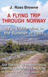 A Flying Trip Through Norway (Norwegian HIstory Literature)