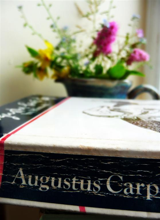 Taken for a project last year - any excuse to spread the word about Augustus Carp.