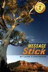 Message Stick