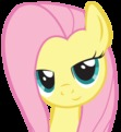 Spending the Night at Fluttershy's