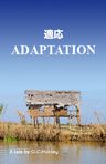 A Human's Approach to Adaptation